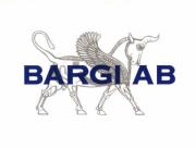 Bargi